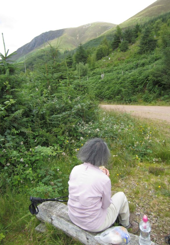 Trackside lunch amid blackberries with Scotland's dour highland hills glowering above.