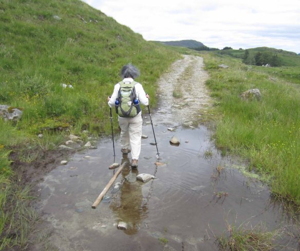 Walking poles are essential to help get you through muddy patches. Near Crianlarich on the West Highland Way, 30 July, 2015.