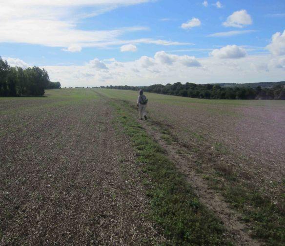 We walked across many kilometres of empty, silent fields. The solitude was blissful.