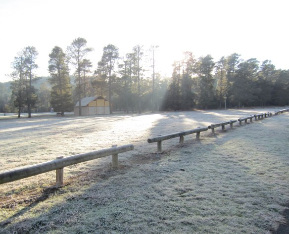 Tuggeranong_Ice_Age_sunlight_on_frost
